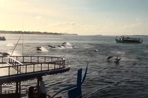 Sheraton Maldives Fullmoon Resort & Spa – Maldives – Dining Options
