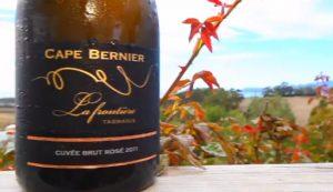 Cape Bernier Vineyard - Hobart