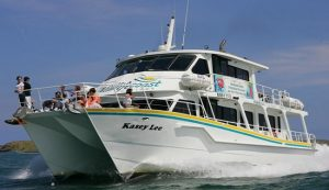 WildLife Coast Cruises - Cowes