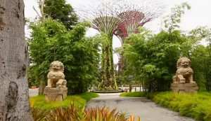 City Tours - Singapore