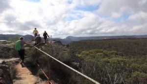 Mount'n Beach Safaris - Blue Mountains