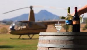 Pterodactyl Helicopters Wine Tours - Brisbane