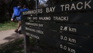 Auswalk Walking Holidays - Mornington Peninsula