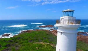 Imagine Cruises - Fingal Island Eco Tour - Port Stephens