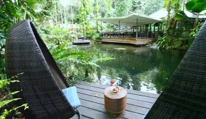 The Daintree Ecolodge