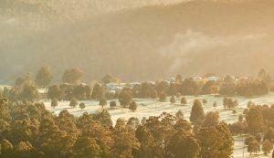 Tarraleah - Central Highlands