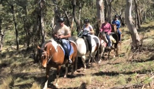 High Country Trail Rides - Oberon - New South Wales - Promotion